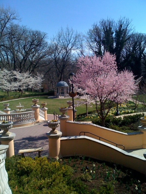 Omni Shoreham Hotel gazebo and garden