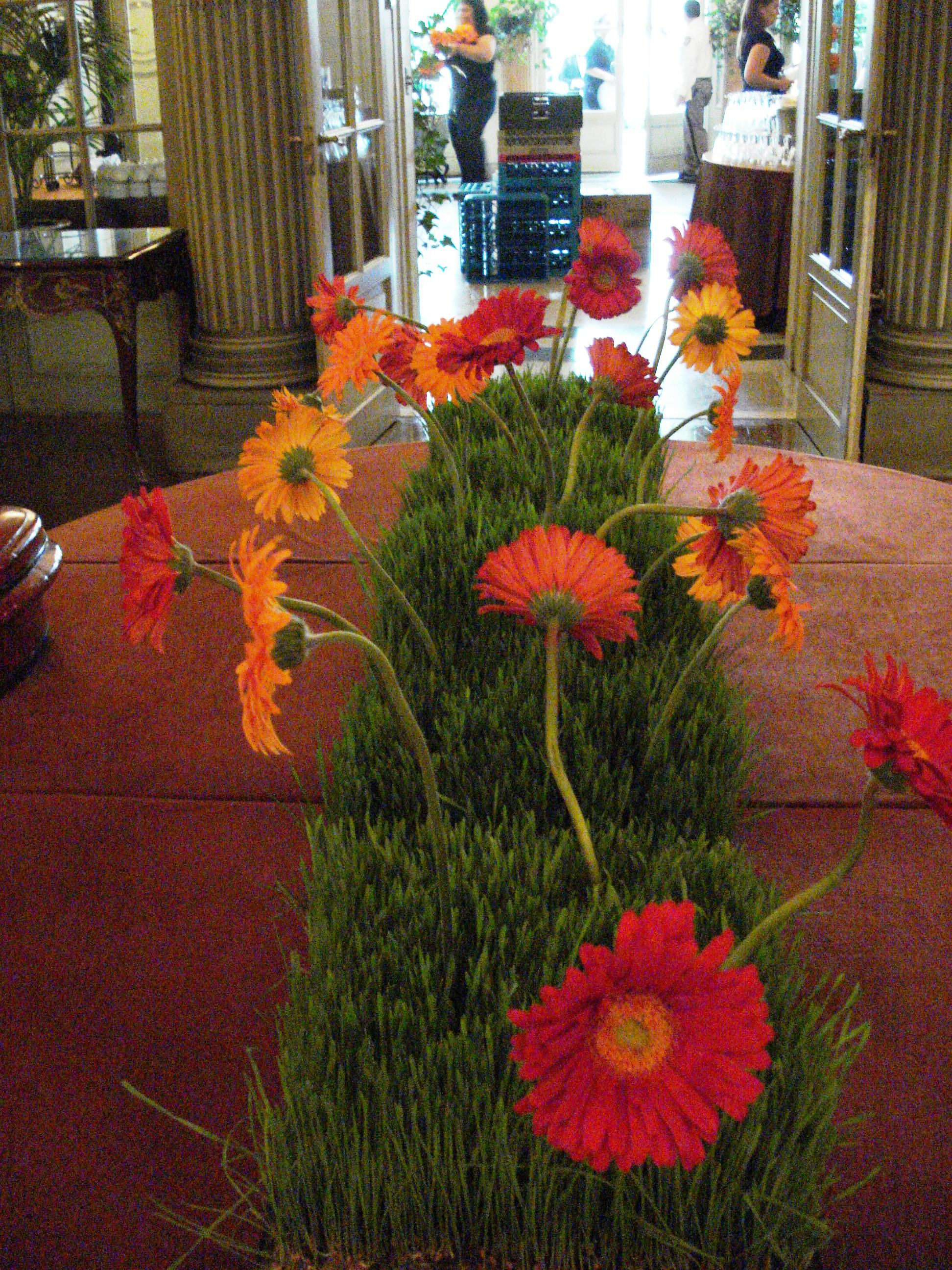 Gerbera daisies in wheatgrass floral centerpiece