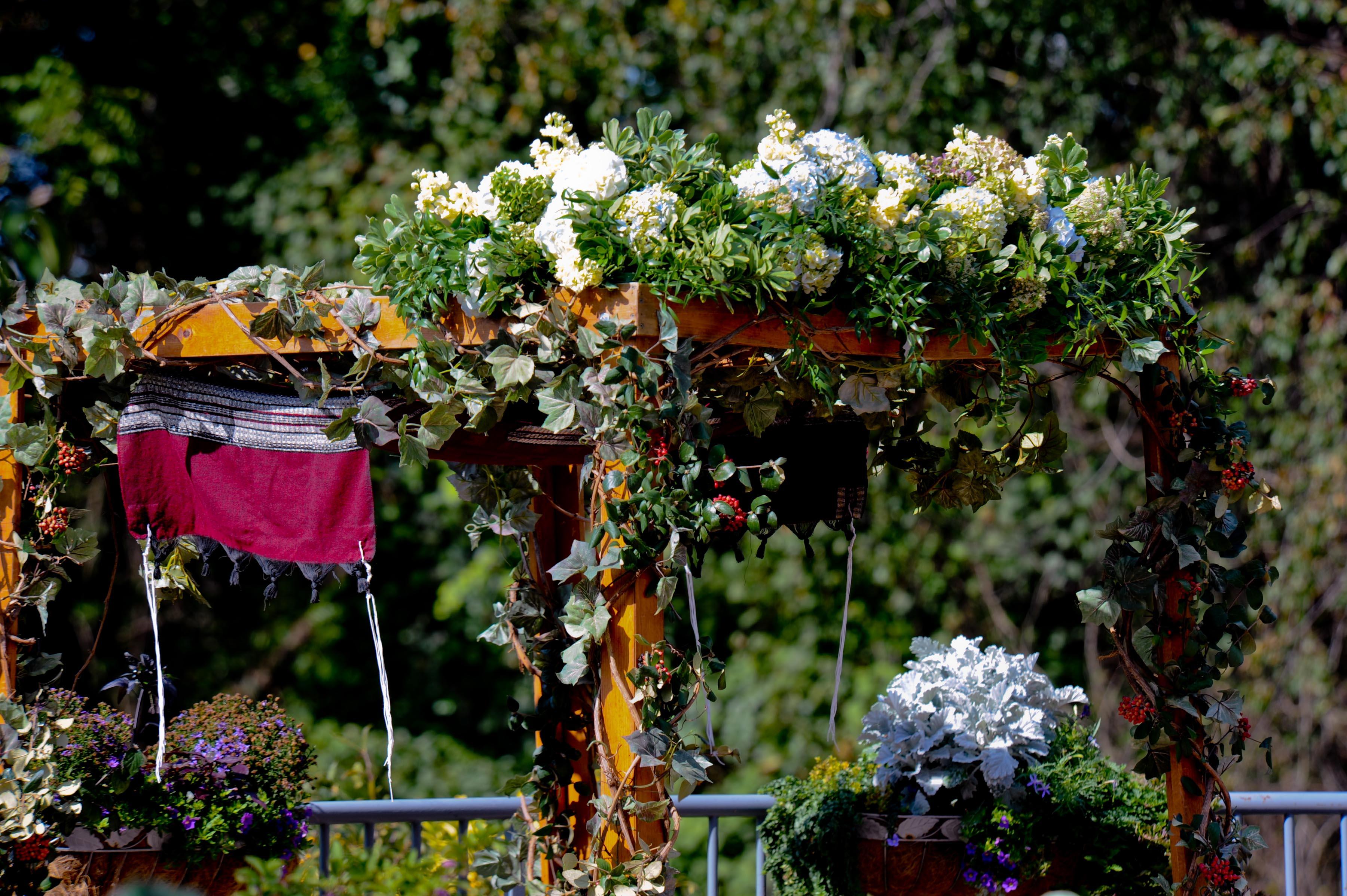 Fall jewish wedding at meadowlark botanical gardens - Meadowlark botanical gardens wedding ...