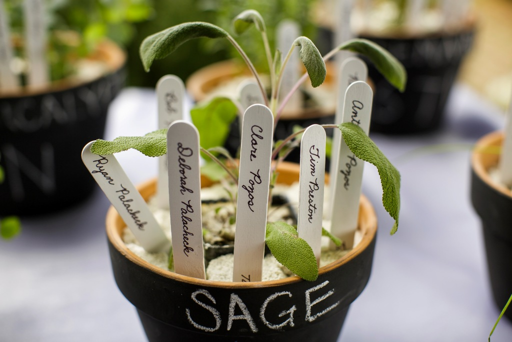 Potted Herbs Escort Cards River Farm VA wedding