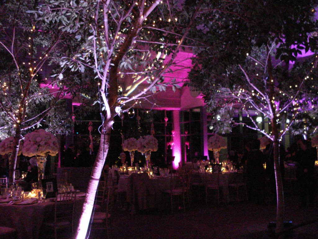 meadowlark botanical garden wedding lighting