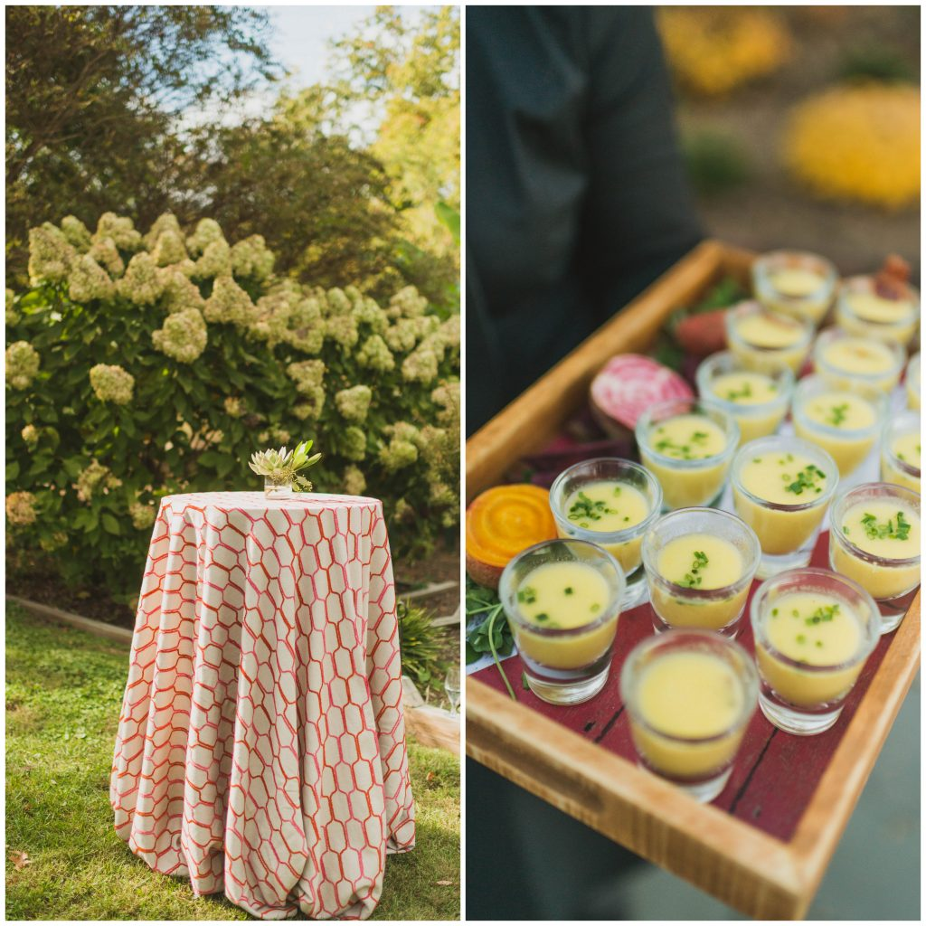 Root and Stem Catering